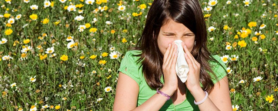 Allergie & Heuschnupfen